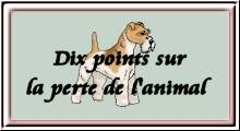 Dix points sur la perte de l'animal